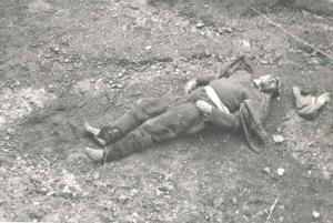 Arhiva CNSAS - Alexandru Macavei ucis de Securitate