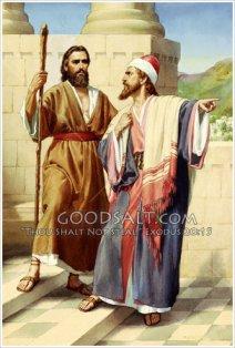 prophet vs priest